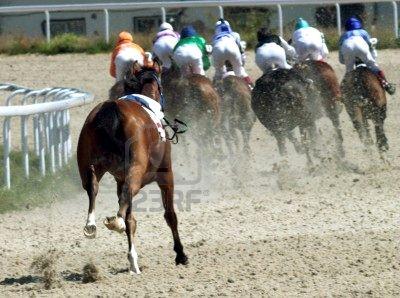 5461654-horse-race-horse-lost-the-jockey