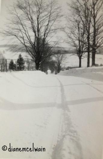 snowonhill