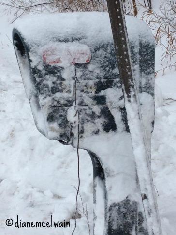 snowmailbox